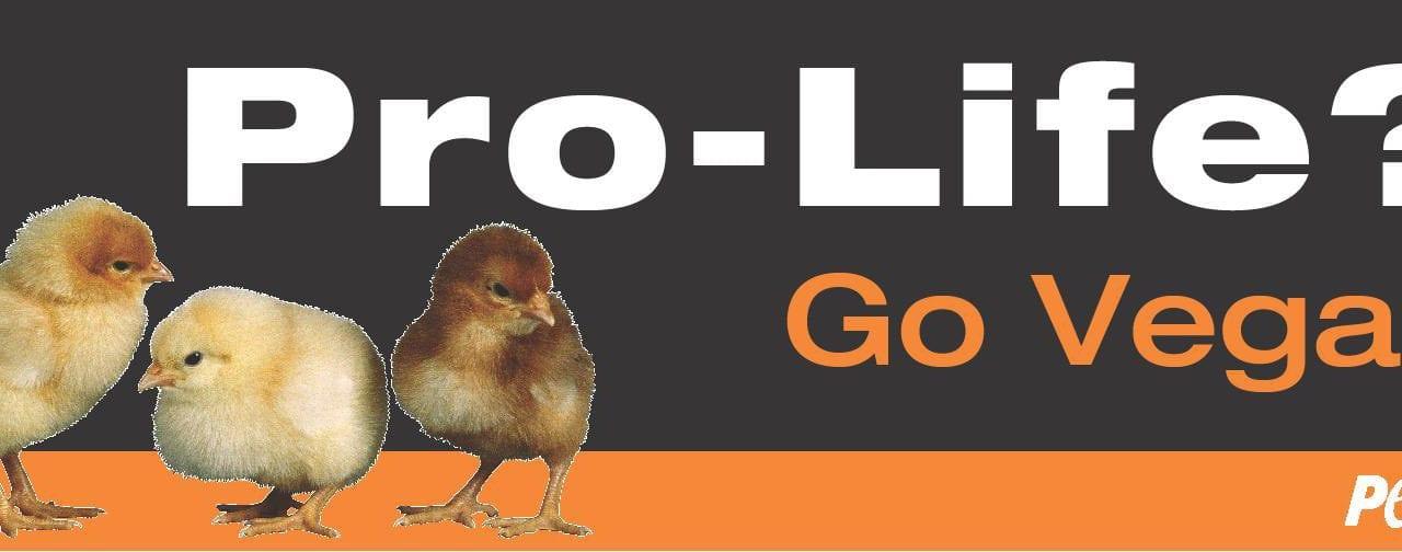Abortion Ban Prompts 'Pro-Life? Go Vegan' Billboard in Atlanta